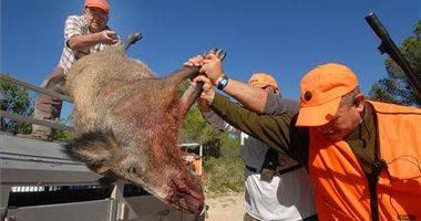 Los cazadores activan una campaña de seguridad para evitar más muertes